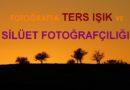 Fotoğrafta Ters Işık Kullanımı ve Siluet Fotoğrafçılığı